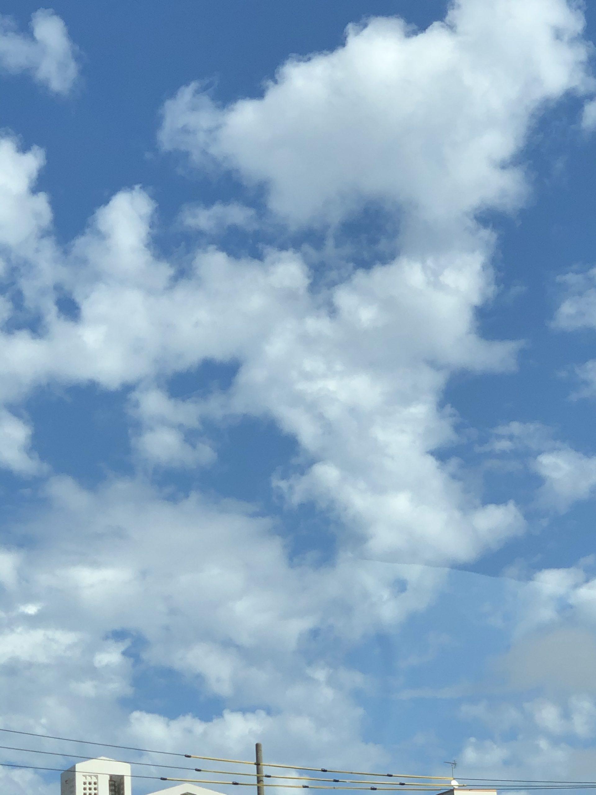 暑い 沖縄は夏です(⌒_⌒;