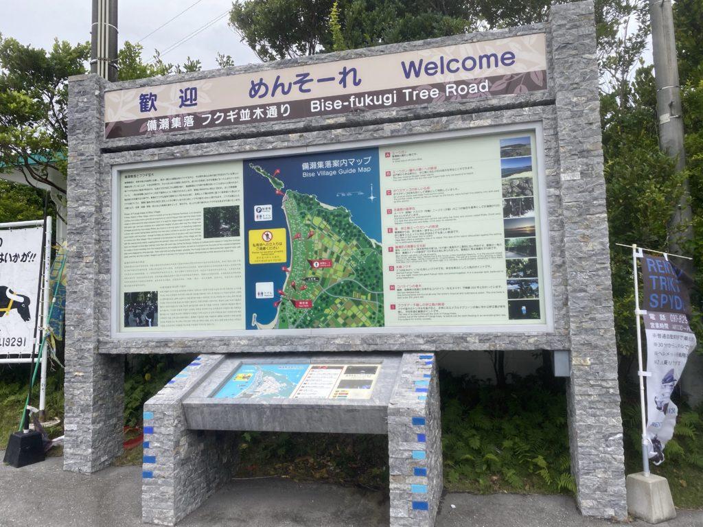 沖縄の備瀬にある【フクギ並木】観光スポットのひとつ写真をいっぱい撮ってきました。