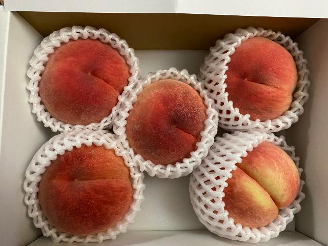 お中元に山梨県産の【桃】を注文!ネット注文【食べチョク】は簡単でいいな♪